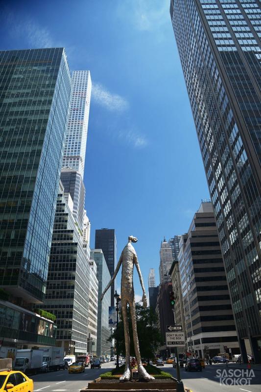 105new-york_2016_-1252f_fb